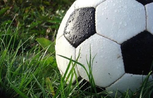 Виды и особенности спортивных ставок